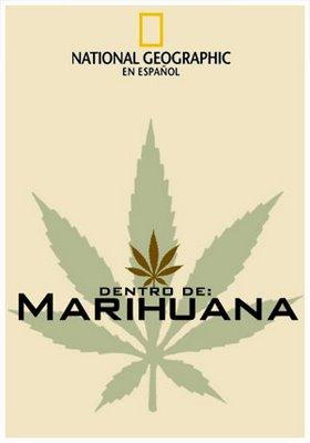 Dentro de la marihuana