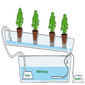 nutrientes cultivo hidroponico