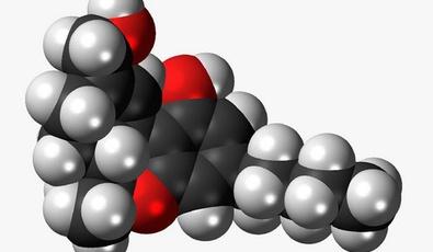 Los Cannabinoides y sus Efectos, THC, CBD, CBN, CBC, CBL, CB...