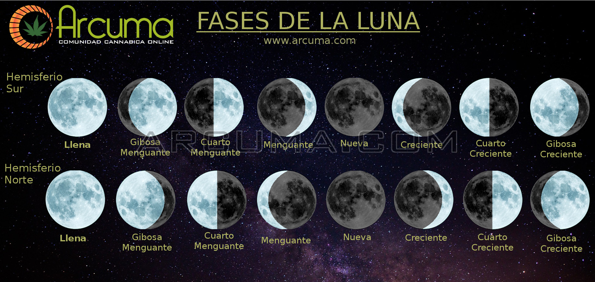 Calendario Lunar Cannábico 2019 - Blog Arcuma