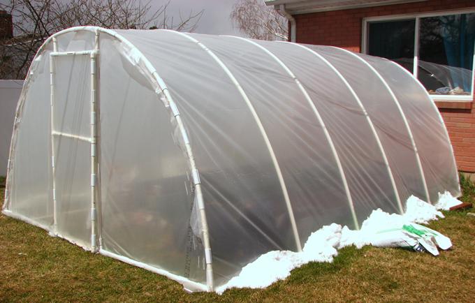 Como cultivar marihuana en invernadero - Como plantar marihuana en casa paso a paso ...