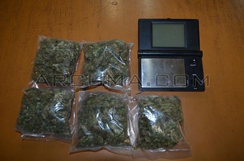 Cu ntas plantas de marihuana se pueden tener en casa - Es legal tener dinero en casa ...