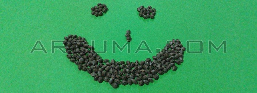 Cara sonriente con semillas de marihuana