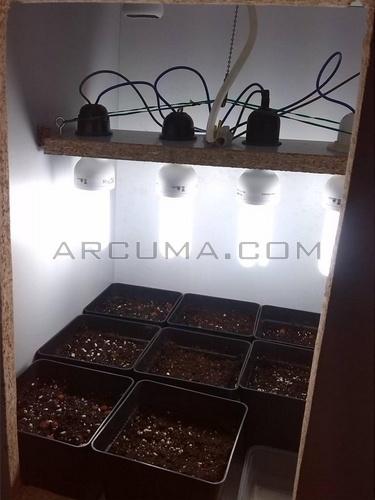 Armario Farmaceutico ~ Cómo Hacer un Indoor Casero con Materiales Reciclados