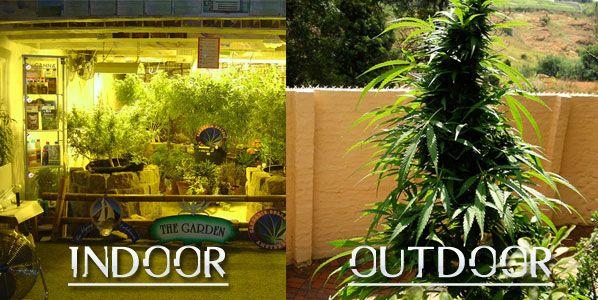 indooroutdoor.jpg