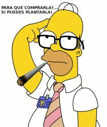 Homer-pythagoras.jpg