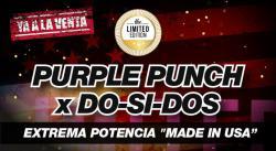 web-purple-dos-es (1).jpg