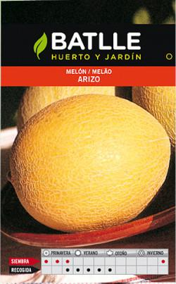 melon-arizo.jpg.db0d32c90b22b4cbd6d3b85dd2769a03.jpg